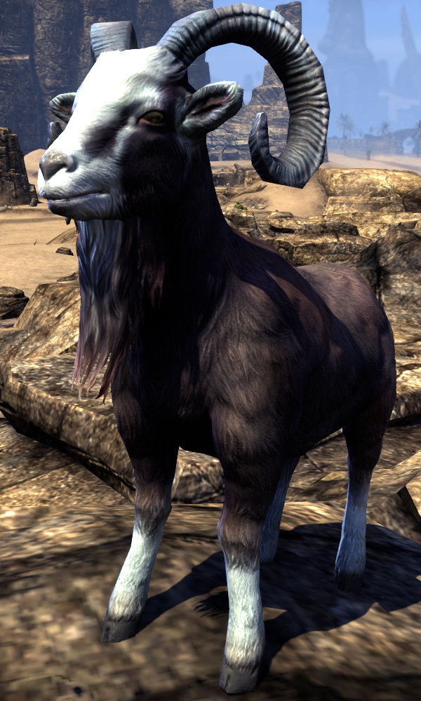 Goat (Online)