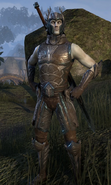Maormer Guard