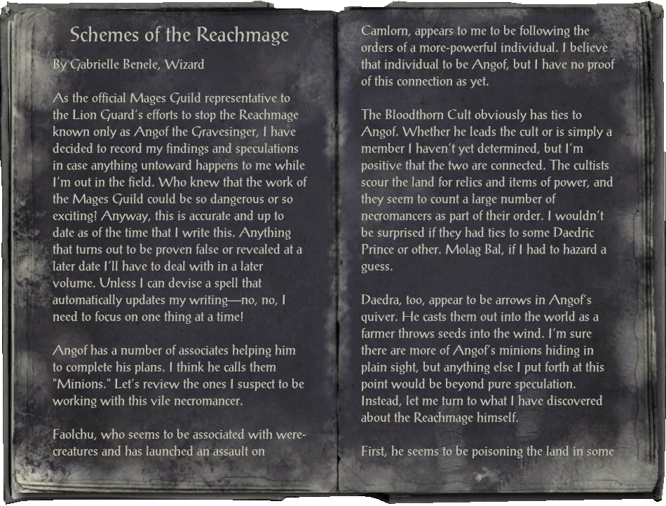 Schemes of the Reachmage