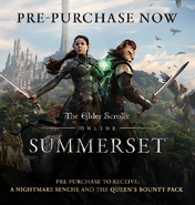 Summerset Steam promo