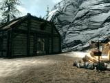 Angi's Camp