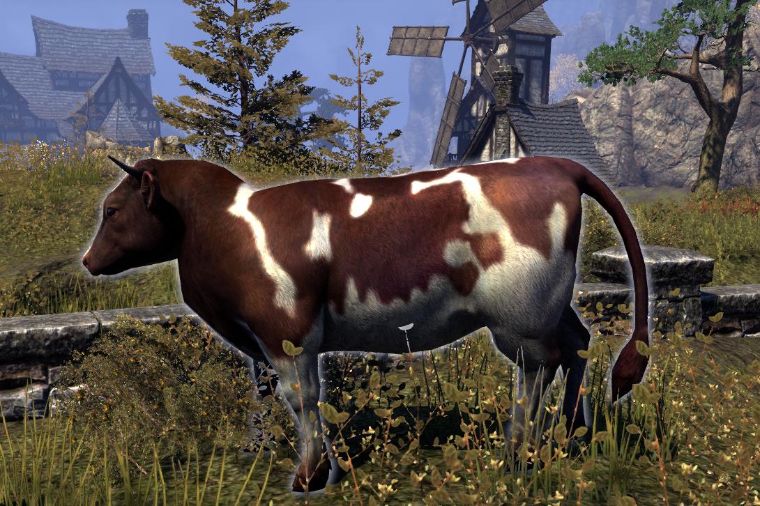 Cow (Online)