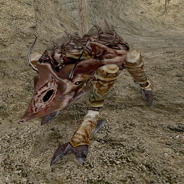 Рабочий квама (Morrowind)