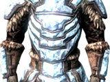 Сталгримовое снаряжение (Dragonborn)