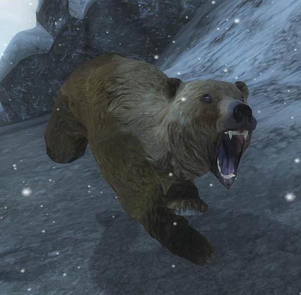 Bear (Oblivion)