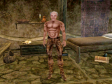 Main Quest (Morrowind)
