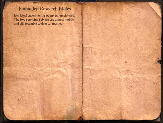 Forbidden Research Notes
