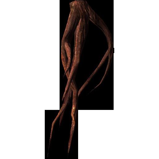 Ползучая лоза (Skyrim)