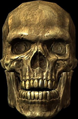 Ancient Traveler's Skull