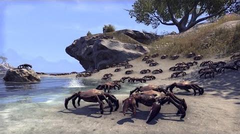 Espartannoble6/Presentadas las expansiones Dark Brotherhood y One Tamriel para TESO