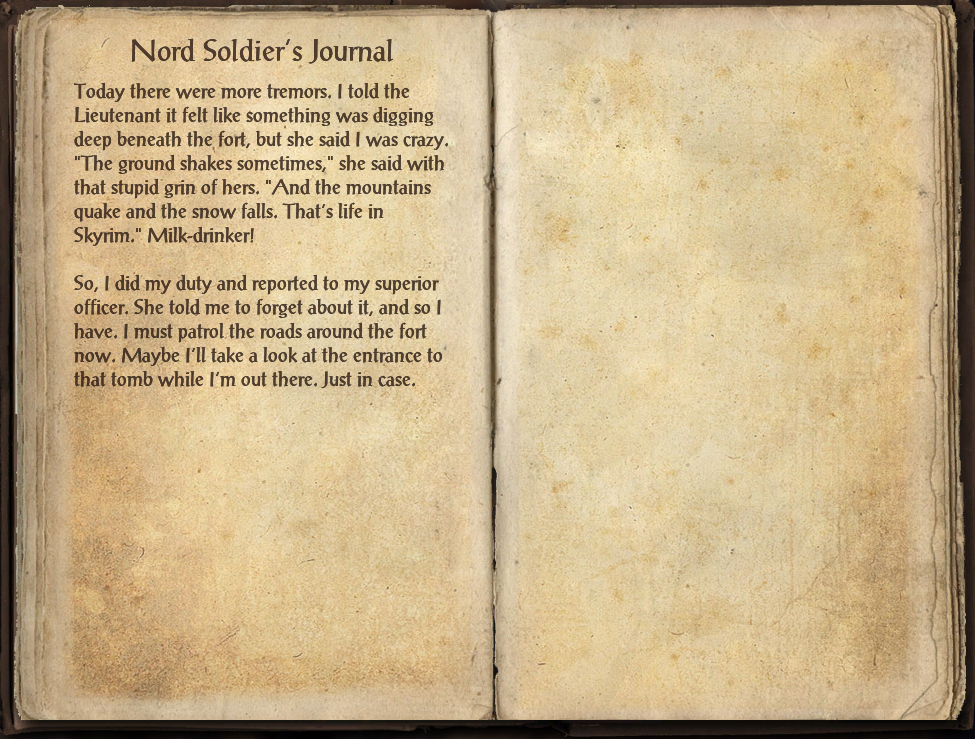 Nord Soldier's Journal