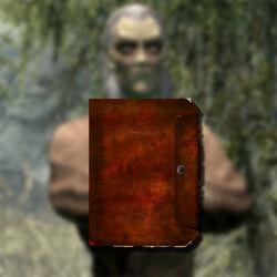 Найти дневник Рунила.jpg