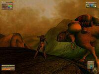 Beta Morrowind Gnisis