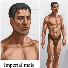 Imperial Male.jpg