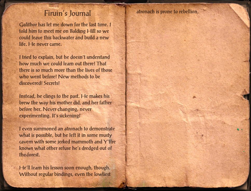 Firuin's Journal