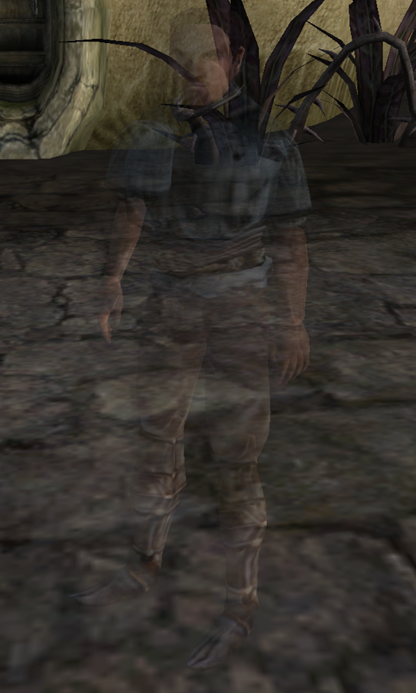 An Invisible Son