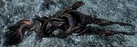Martwy atronach ognia (Skyrim)