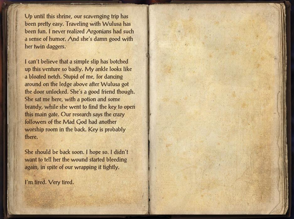 Shrine Scavenging Journal