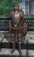 Imperial Legionnaire