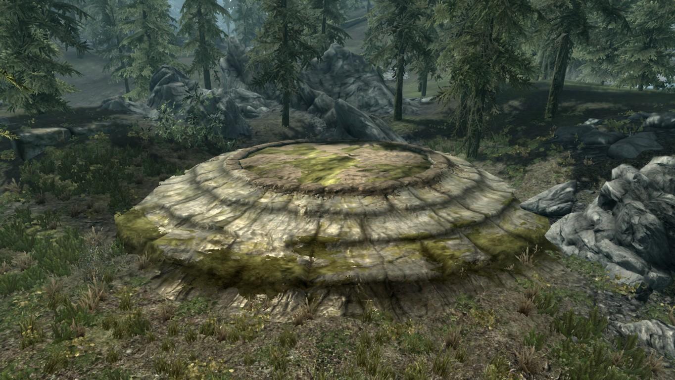 Драконий курган — Вечнозелёный лес