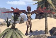 Harpy Alik'r Desert (Online)