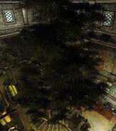 Drzewo Hist (Oblivion)