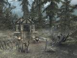 Witchmist Grove