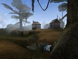 Сейда Нин (Morrowind)