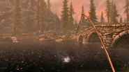 Fishing CC