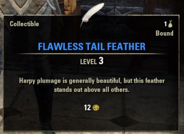 Flawless Tail Feather