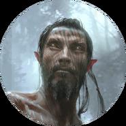 Bosmer avatar 1 (Legends)