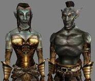 Morrowind, Dunmer
