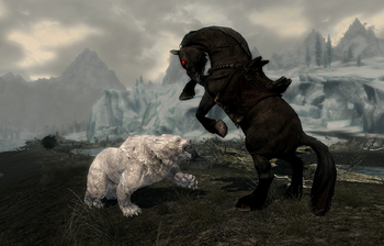 Shadowmere and a Snow Bear