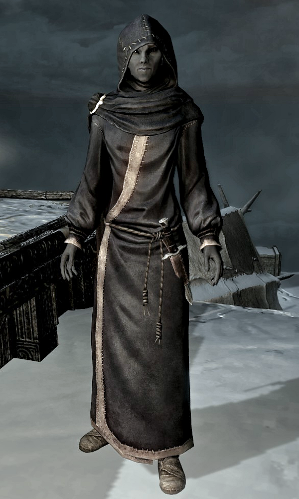 Aranea Ienith