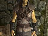Blackguard's Armor