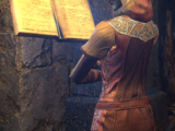 Magister Therana (Online)