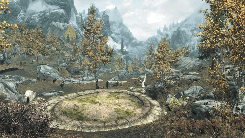 Dragon Mound: Autumnwatch Woods