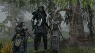 Argonian-group TESO