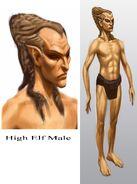 High Elf Male