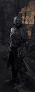 Orsinium New Armor Set