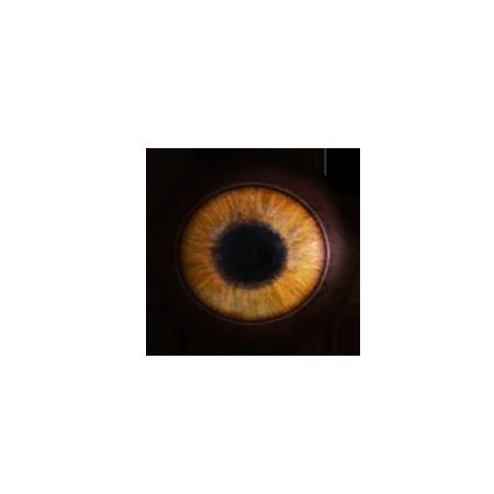 Глаз саблезуба (Skyrim)