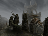 Тель Бранора (Morrowind)