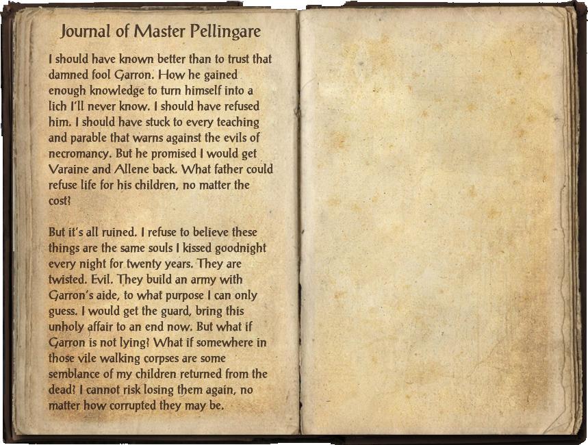 Journal of Master Pellingare