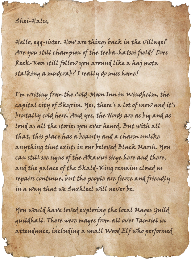 Letters from the War: Windhelm