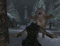 Werewolf Player Fighting Bear