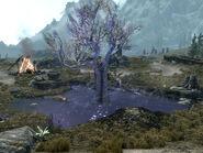 Śpiące drzewo (Skyrim)