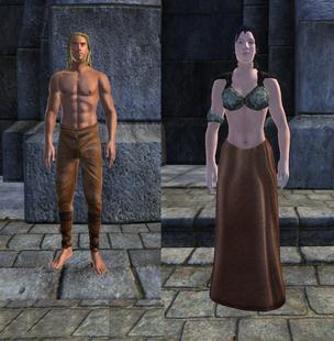 Коричневая одежда 1