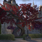 Shimmerene Red Tree.png