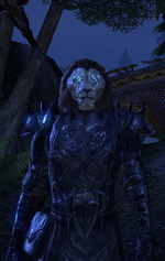 The Cat Master - ESO - Ra'zhir the Stormclaw (Old Appearance).png
