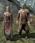 Dwóch Altmerów (Skyrim)